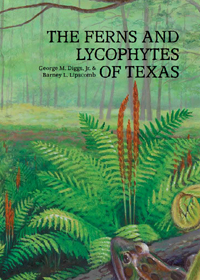Ferns and Lycophytes Book Cover for web
